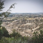 Day 8 | Theodore Roosevelt National Park