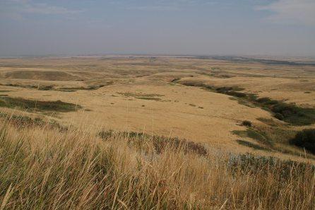 The campsite/processing area (prairie)