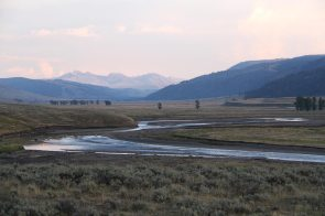 Lamar valley at sunset