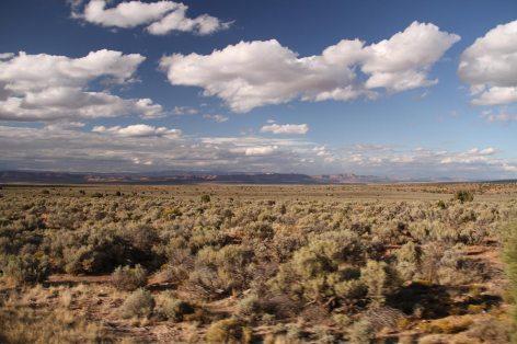 Going back to Utah
