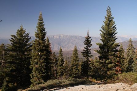 View on Kings Canyon