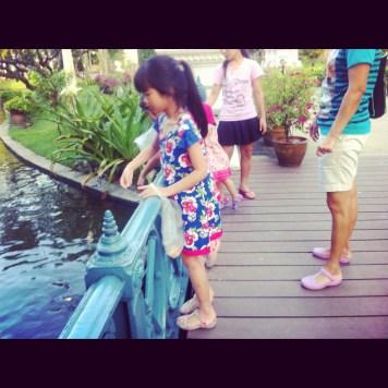 karmiąc ryby