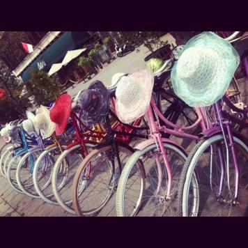 kolorowo rowerowo