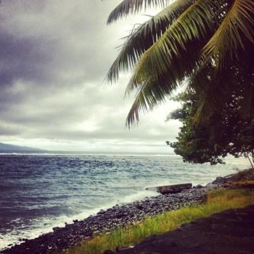 tropikalnie mokro