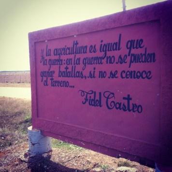 cytat z Fidela