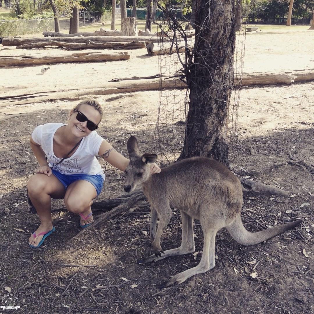Julia i kangur
