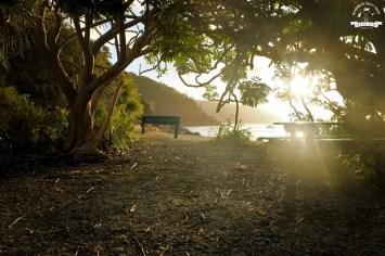 Maureens Cove