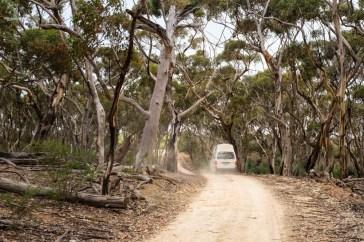 Kangaroo Island drogi