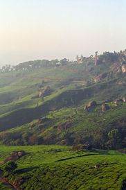 Munnar Tourist Places Pictures