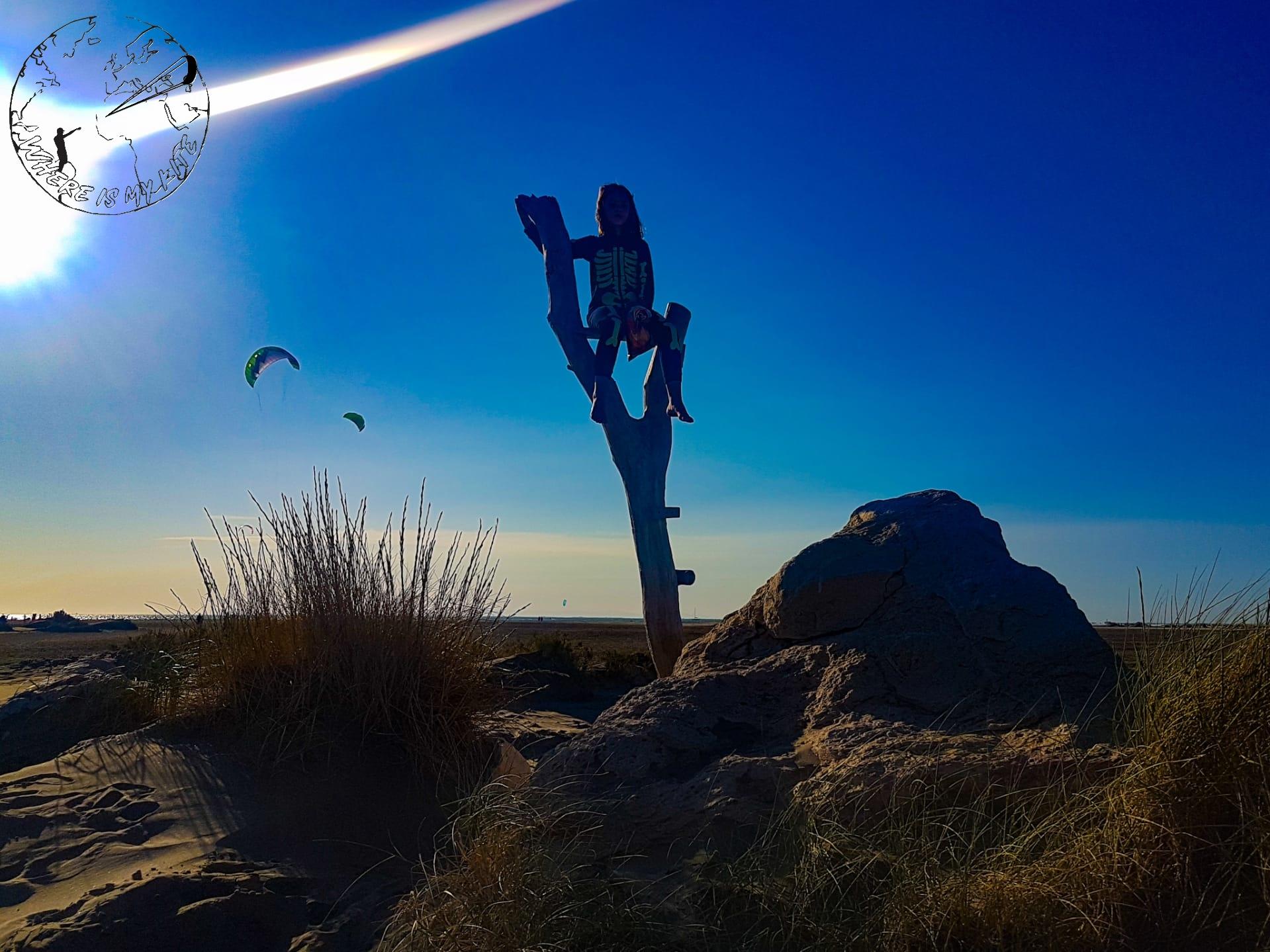 Spot de kite et nature de la plage de Beauduc en France
