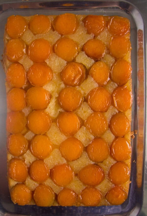 upside down apricot cake 3 Upside Down Apricot Cake with Fresh Apricots