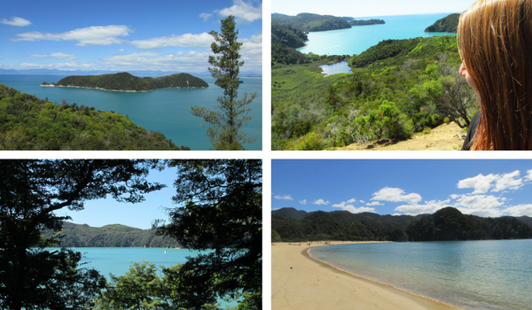 New Zealand - My Roundup of the South Island