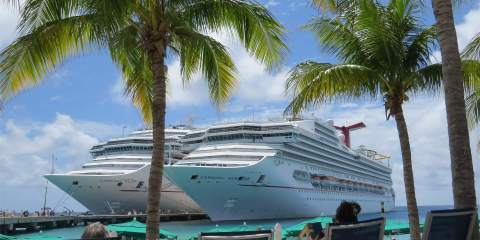 pros and cons of a cruise where is tara pix