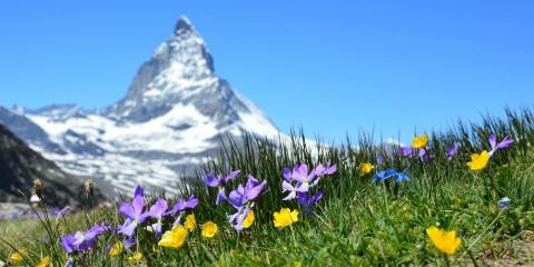 reasons to visit switzerland where is tara