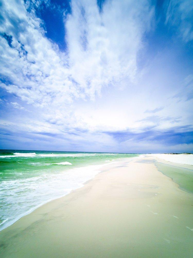 Shell Island Panama City Beach Florida day trip beach