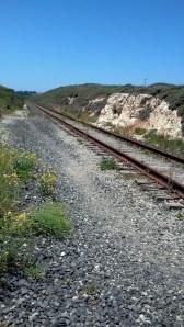 Rail Road Near 101