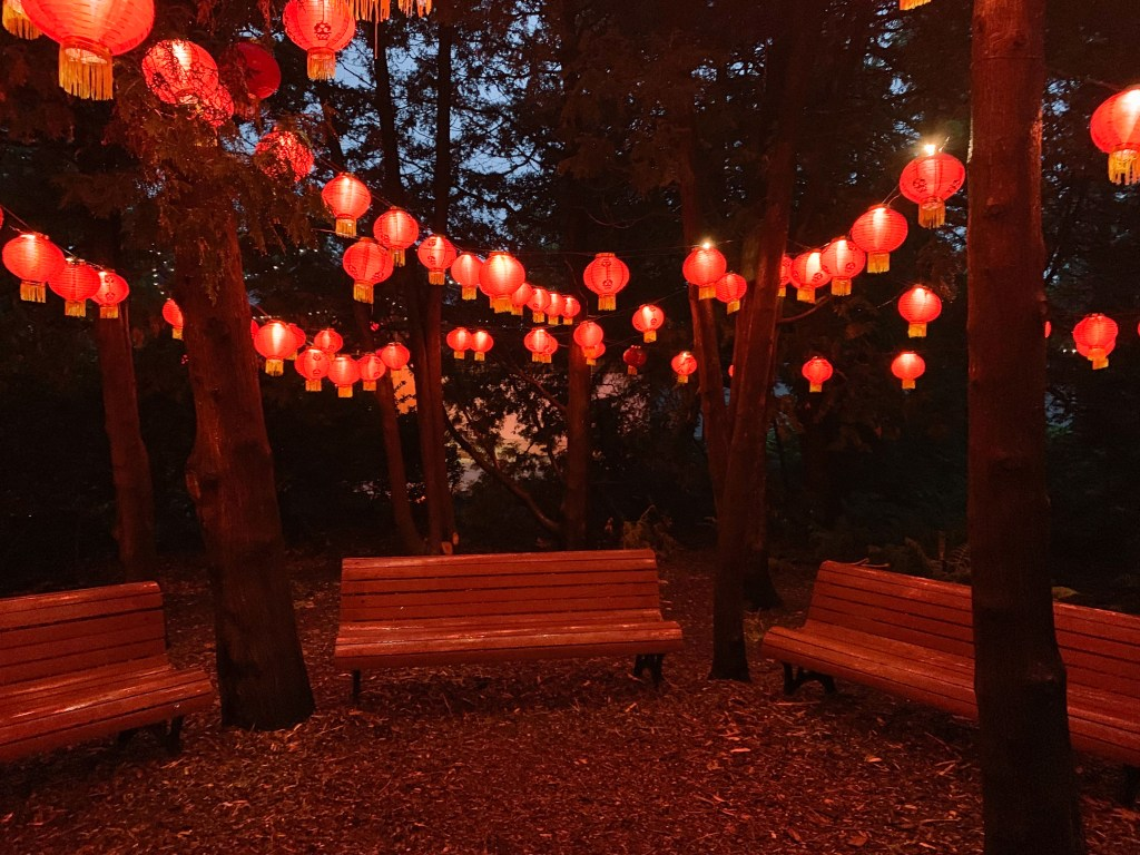 colorful Chinese lanterns hanging from trees at the Gardens of Light in Montreal Botanical Garden