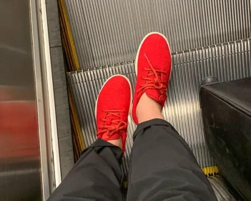 red allbirds travel shoes