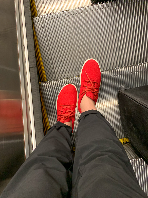 red allbirds travel shoes