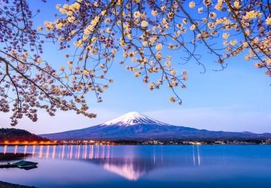 แผนการเดินทาง-โตเกียว-Kawaguchiko-5-วัน-Tokyo-Kawaguchiko-Fuji-Wherejapan-ญี่ปุ่นไปไหนดี