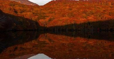 Aomori ที่เที่ยว อาโอโมริ wherejapan อาโอโมริ เที่ยวไหนดี ญี่ปุ่น เที่ยวไหนดี