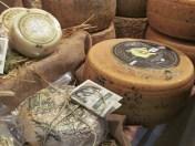 Assorted local Pecorino (Sheep milk) cheeses