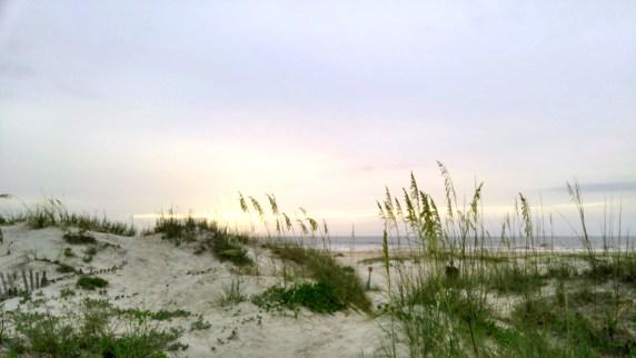 sa beach am-01 24x BY CHARLEBOIS
