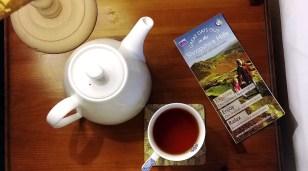 Morning tea at Bank House, Bishop's Castle