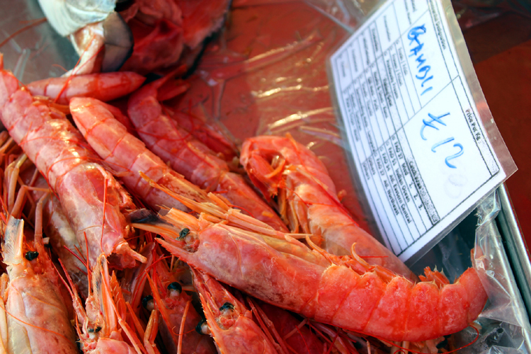 Shrimp in the open market at Marsaxlokk Malta.