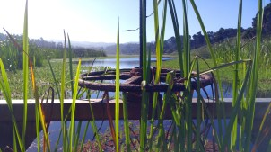 10 mile estuary flood gates-01 med
