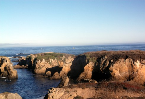 Looking due west from the Noyo Headlands - Fort Bragg, California Photographer: Mary Charlebois