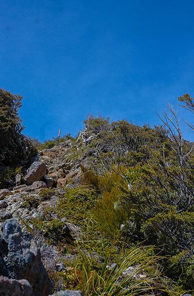 The first vertical climb.