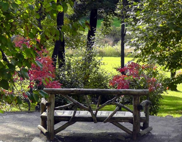beautiful garden benches Travel theme: Benches | Where's my backpack?