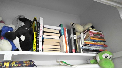 My books were beginning to overflow into my closet and my donation pile was growing larger