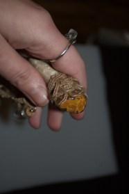 tiny-wand6