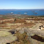 View of Bar Harbor (and cruise ships) from the top of Cadillac Mountain