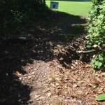 Dirt path to golf course Hatfield McCoy Marathon 2014