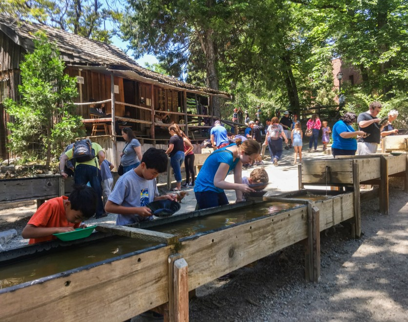 Panning for Gold. Columbia State Historic Park