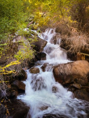 Cascades on the North Fork of Big Pine Creek.