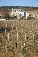 Chateau de Mercurey across the vineyards