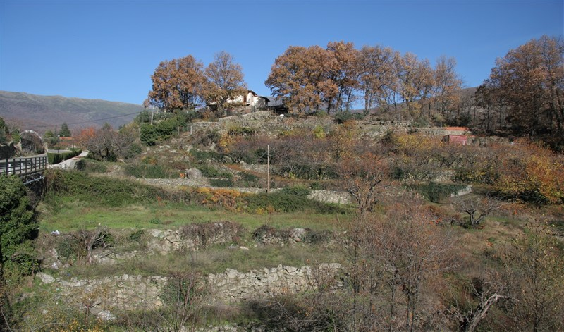 old-terraces