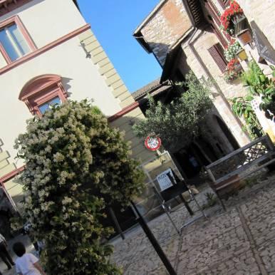 Spello - the town