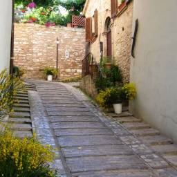 Spello - Flowers along the streets