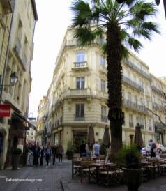 Montpellier41