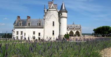 Amboise castle - where the foodies go63