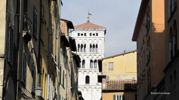 lucca - where the foodies go 12