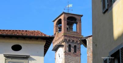 lucca - where the foodies go 6