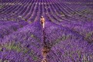 Provence - where the foodies go 9