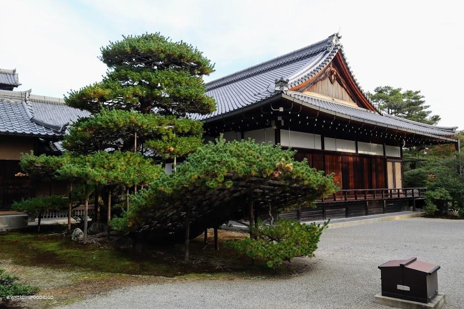 Templi Kinkaku-ji e Ginkaku-ji, Tokyo
