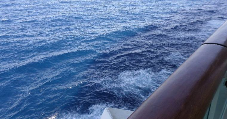 How to Combat Seasickness While Cruising